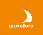 Amvoilure
